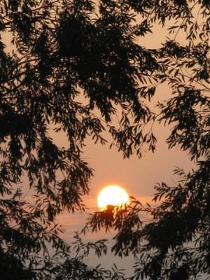 Il Sole visto da ....... Terra - Pianura Padana autunno 2008 (foto personale)
