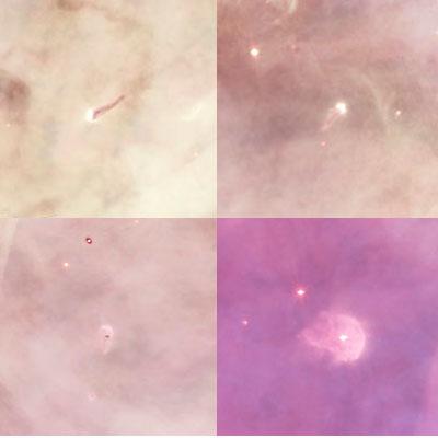 M 42 Nebulosa di Orione - Questa nube molecolare e' una vera e propria culla stellare con stelle neonate, protostelle e stelle con dischi protoplanetari (come in questa composizione di 4 differenti stelle e dello disco in formazione)