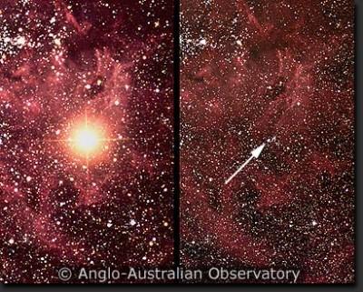 SN 1987a a sinistra e Sanduleak prima dellesplosione a destra