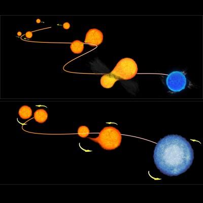 Schyema della nascita delle vagabonde blu - crediti NASA/ESA